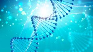 ゲノム解析のイメージ